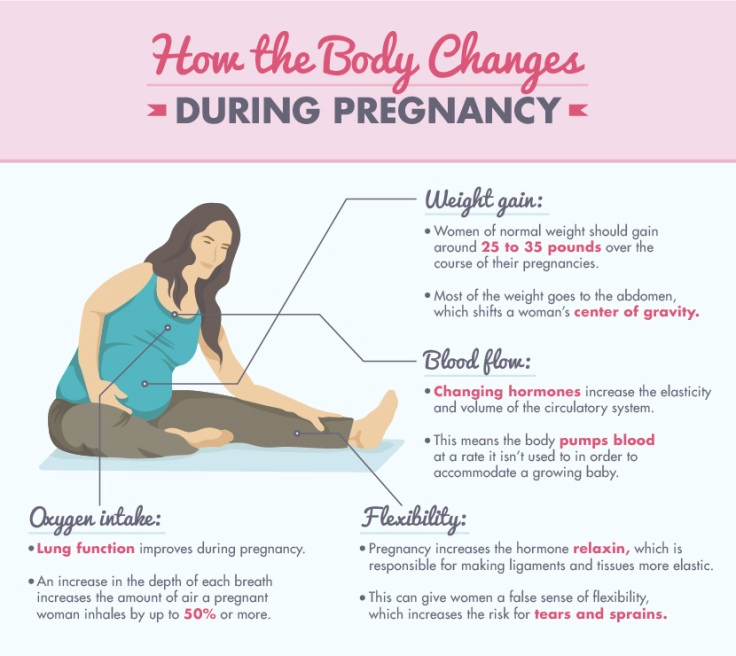how-the-body-changes-001